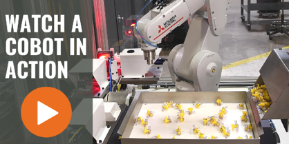 Watch Cobot in Action CTA